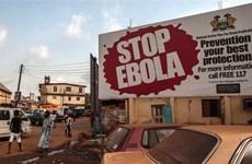 WHO xác nhận ca nhiễm Ebola mới thứ hai tại Sierra Leone