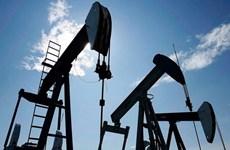 Nhà đầu tư lạc quan hơn, giá dầu châu Á tiếp tục phục hồi