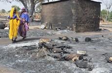 Nigeria: 30 người thiệt mạng trong các vụ tấn công của Boko Haram