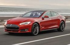 Malaysia sẽ nhập khẩu 100 xe điện Tesla để cắt giảm khí thải