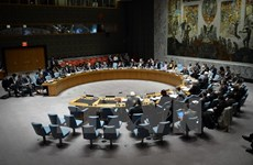 Hội đồng Bảo an hoãn xem xét dự thảo nghị quyết của Nga về Syria