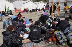 Macedonia tuyên bố ngừng tiếp nhận người di cư Afghanistan