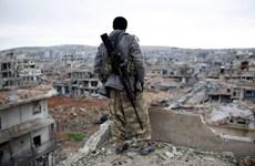 Mỹ cam kết ngừng bắn ở Syria bất chấp thông tin về các vi phạm