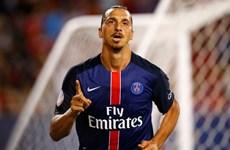 Ibrahimovic cần bớt ngông cuồng để có thể vô địch Champions League