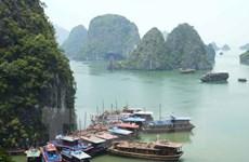 Quảng Ninh tạm dừng đón khách tại hang Đầu Gỗ trên Vịnh Hạ Long