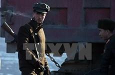 Hàn Quốc lên án Triều Tiên thực hiện các vụ tấn công mạng