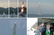 Nhật Bản phản đối vụ Triều Tiên phóng tên lửa từ tàu ngầm