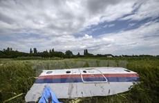 Tổng thống Nga Vladimir Putin bị kiện trong vụ rơi MH17