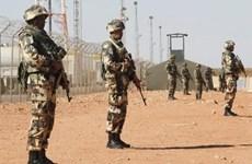 An ninh Algeria diệt nhóm khủng bố được trang bị trung liên