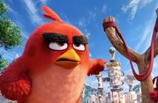 """""""Angry Birds"""" lên ngôi đầu khi """"X-Men: Apocalyse"""" chưa ra rạp"""