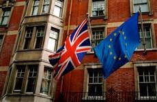 """Pháp, Đức chuẩn bị """"Kế hoạch B"""" cho EU sau trưng cầu """"Brexit"""""""