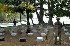 Lực lượng quân đội Colombia tịch thu hơn 1,5 tấn cocaine