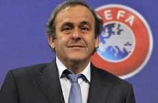 EURO 2016: Michel Platini ở đâu khi Pháp đối đầu Albania?