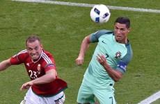 EURO 2016: Ưu thế đối đầu có giúp Bồ Đào Nha đánh bại Ba Lan?