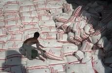 Thái Lan sẽ bán đấu giá 3,7 triệu tấn gạo trong tháng 7