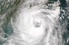 Bão Nida với sức gió lên tới 151 km/h đổ bộ vào Trung Quốc