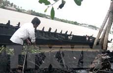 [Video] Cháy 13 tàu du lịch ở Bến Tre làm thiệt hại nhiều tỷ đồng