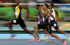 Câu chuyện về bức ảnh biểu tượng của Usain Bolt tại Rio 2016