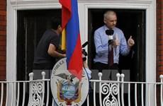 Ecuador cho phép thẩm vấn nhà sáng lập WikiLeaks trong tháng 10