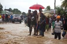 Haiti: Số người chết do bão Matthew gây ra đã lên tới 136
