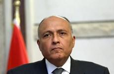 Ai Cập khẳng định không có bất cứ xung đột với Saudi Arabia