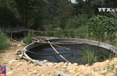 Cá hồi chết bất thường ở Sa Pa là do nguồn nước bị đầu độc?