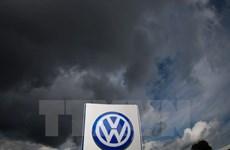 Volkswagen đồng ý đền bù thiệt hại cho hàng nghìn chủ xe