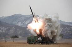 Hàn Quốc sẽ phát triển tên lửa để đối phó với pháo binh Triều Tiên
