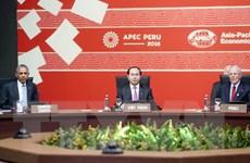 Phát biểu của Chủ tịch nước Trần Đại Quang tại Phiên bế mạc APEC 2016