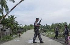 Myanmar: Các nhóm vũ trang tiếp tục tấn công tiền đồn ở miền Bắc