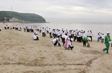 Nghiên cứu cải thiện hiện tượng đục nước ở vùng biển Đồ Sơn
