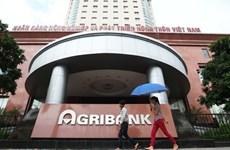 Xét xử phúc thẩm vụ án tham nhũng ở Agribank chi nhánh Nam Hà Nội