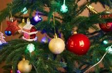 [Photo] Những điều thú vị về Giáng sinh có thể bạn chưa biết