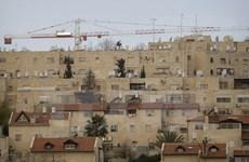 Israel dự kiến thông qua kế hoạch xây nhà định cư ở Đông Jerusalem