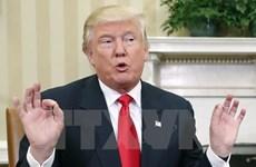 """Nếu may mắn, sẽ """"chỉ có 1/3 dân Mỹ căm ghét ông Donald Trump"""""""