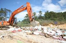 Lâm Đồng tiêu hủy hơn 10 tấn mứt Tết không rõ nguồn gốc xuất xứ