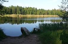 Lượng khí metan bốc hơi từ các hồ nhỏ khiến Trái Đất nóng hơn