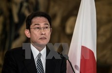 Nhật Bản cam kết hợp tác với Hàn Quốc sau khi bà Park bị phế truất