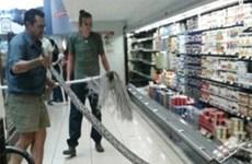 """Khách hàng vào siêu thị mua sữa chua được """"khuyến mãi"""" con trăn"""