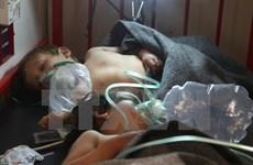Nhóm chuyên gia OPCW điều tra vụ tấn công hóa học tại Syria