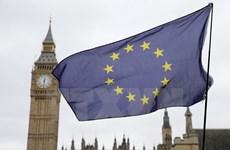 Nhiều người Anh hối tiếc về quyết định rời Liên minh châu Âu