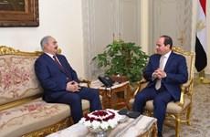 Ai Cập thúc đẩy đối thoại chính trị giải quyết khủng hoảng Libya