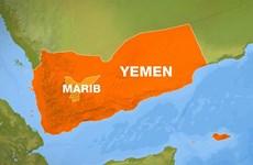 Các lực lượng Mỹ tiêu diệt 7 tay súng Al-Qaeda tại Yemen