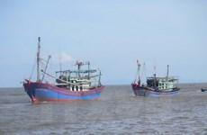 Thái Lan bắt giữ 48 ngư dân Việt Nam đánh cá bất hợp pháp
