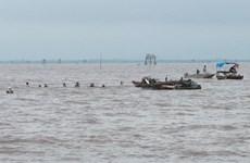 Hải Phòng: Một ngư dân bị mất tích khi đang làm việc trên biển