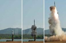 Nga phản đối những hành động trừng phạt đơn phương Triều Tiên
