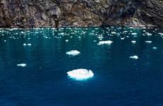 Nước biển dâng nhanh khiến nhiều thành phố duyên hải bị đe dọa