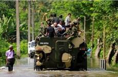 Sri Lanka triển khai hàng trăm binh sỹ đối phó dịch sốt xuất huyết