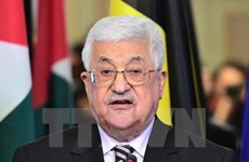 Tổng thống Abbas: Palestine luôn ủng hộ các nỗ lực chống khủng bố