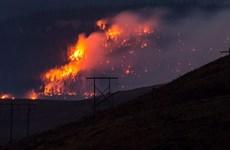 Canada ban bố tình trạng khẩn cấp vì khả năng cháy rừng vượt kiểm soát